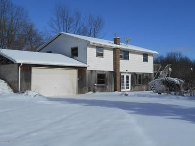 Foreclosure - Bird Rd, Hastings MI 49058