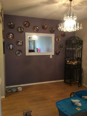 Mirror and Rockwell Plates