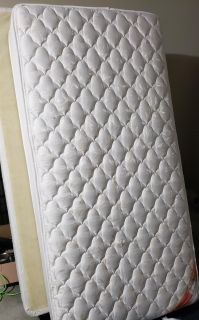 Twin box springs and mattress
