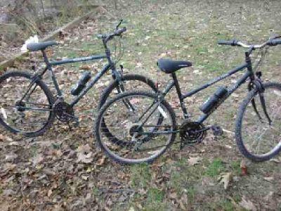 $100 2 Bikes forsale (Kingsville)