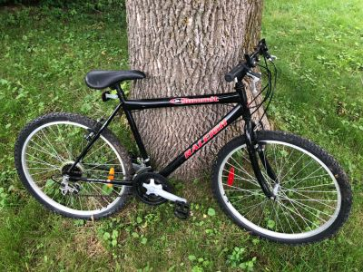 Raleight Summit bicycle with 6 speeds. Flat on the back wheel but fixable. Price is firm!