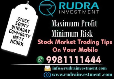 Earn Maximum Money from the Indian Stock Market