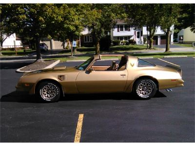 1978 Pontiac Firebird Trans Am SE