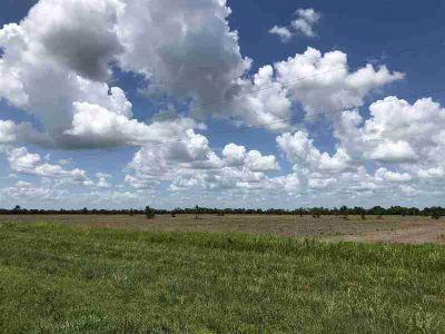 27480 Hwy 365 Lot 9 Port Arthur, 7.30 acres measuring 256 x