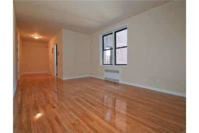 Pet friendly 1Br apt with heat, hw  & gas included
