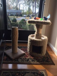 Kitty tower & scratching post