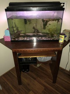 Fish tank and desk with fish included