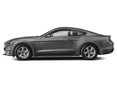 2019 Ford Mustang EcoBoost Premium Fastback (Magnetic Metallic)