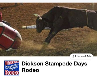 Lone Star Dixon Stampede Days Rodeo