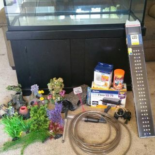 Fish Tank w/stand & extras