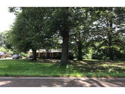 3 Bed Preforeclosure Property in Coldwater, MS 38618 - Antioch Rd