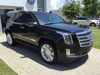 2019 Cadillac Escalade (black raven)