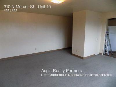 Apartment Rental - 310 N Mercer St