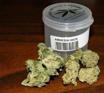 Top Medical Marijuana for Cancer & Back Pain