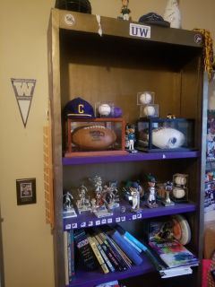 Bookcase painted Husky colors