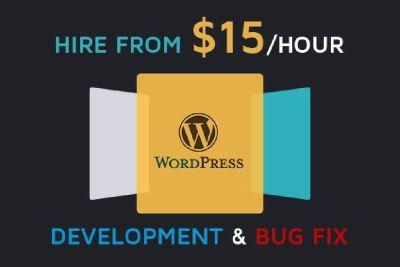 I Will Create Any Wordpress Plugin