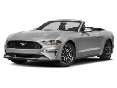 2019 Ford Mustang EcoBoost Premium (Race Red)