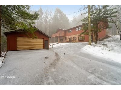 4 Bed 2.5 Bath Foreclosure Property in Vestal, NY 13850 - Jones Rd
