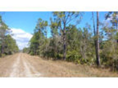 Florida Land for Sale 0.23 Ac, Wooded, Highland County