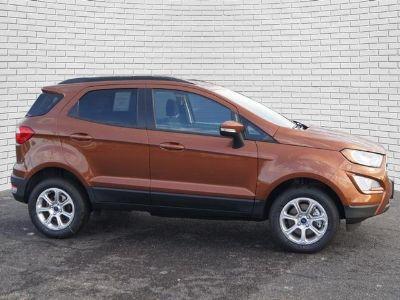 2018 Ford EcoSport SE (Canyon Ridge Metallic)