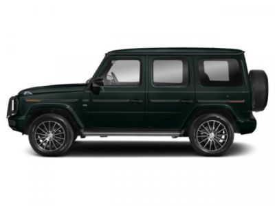 2019 Mercedes-Benz G-Class G 550 (Emerald Green Metallic)
