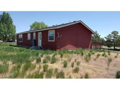 3 Bed 2 Bath Foreclosure Property in Spring Creek, NV 89815 - Spring Valley Pkwy