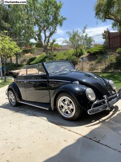 1964 VW Bug Convertible