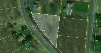 2388 Meadowview Dr Lake Ariel, Very nice building lot in the