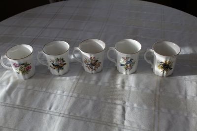 Set of five vintage Royal Grafton Bone China coffee cups- North American Birds series