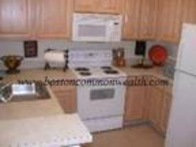 Medford One BR One BA, Walk to Train,very spacious, kitchens