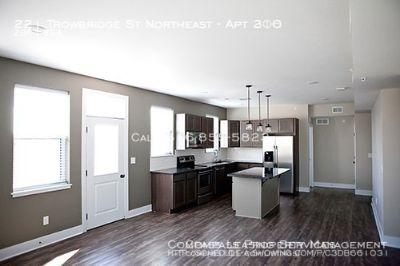 COMING SOON! 2 Bed 2 Bath - Trowbridge Flats -  New Luxury Apartment Complex!
