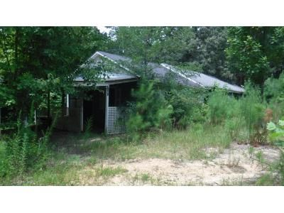 3 Bed 1 Bath Foreclosure Property in Reagan, TN 38368 - Center Hill Wright Rd