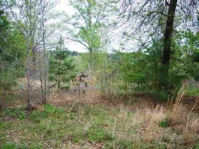 - $39900 Land for sale by owner (Pittsburg, TX)