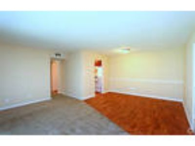 Lakeside Apartments - Three BR 1-1/Two BA, remodeled
