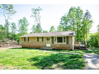 3 Bed 1 Bath Foreclosure Property in Lynch Station, VA 24571 - Butterfly Ln