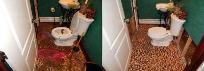 Best Mold Removal Services in Mount Laurel NJ