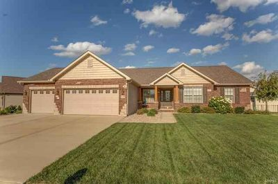 1428 Victoria Square Court O'Fallon Three BR, Stunning curb
