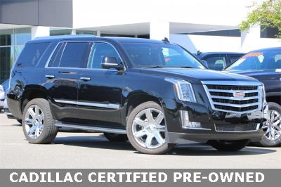 2018 Cadillac Escalade Premium (black raven)