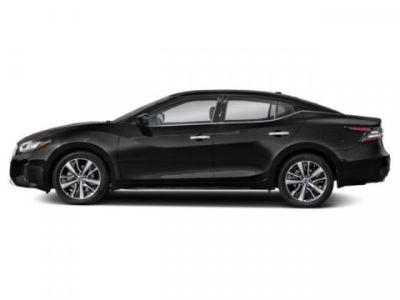 2019 Nissan Maxima S (Super Black)