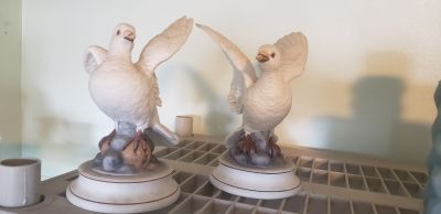 WHITE DOVES BY ANDREA