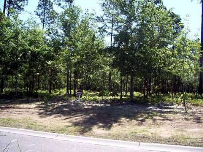 Land for Development in Supply, North Carolina, Ref# 24350