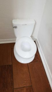 Potty training potty even flushes and makes sound