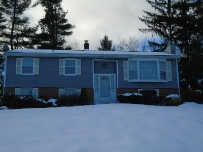 4 Bed 2 Bath Preforeclosure Property in Mahopac, NY 10541 - Trout Pl