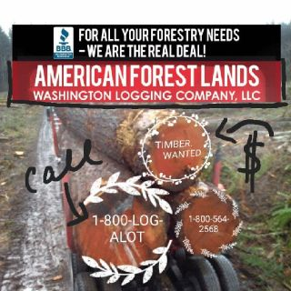 LOGGING Timber TREE Removal Duvall, Auburn, King County Washington