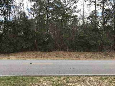 n/a N County Line Road Sylvester, Wooded lot in fantastic