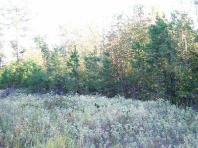 - $18848 3.3 acres for mobile home or site-built (Jefferson)