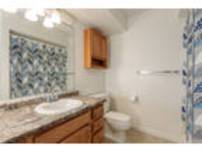 Steeplechase Apartments - One BR, One BA 745 sq. ft.