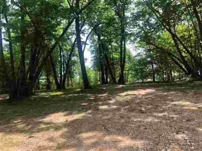 13040 205th Avenue NE Hawick, Beautiful, heavily wooded lot