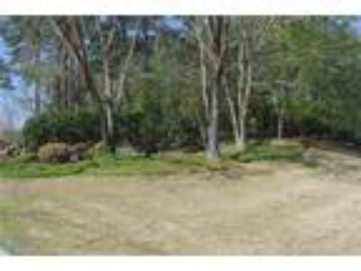 Wooded, gently sloping PAIR of lots within st...