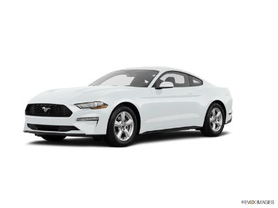 2019 Ford Mustang ECOBOOST  PREM (Oxford White)